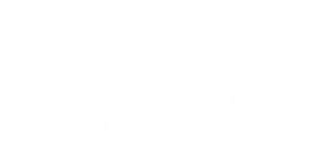 summer_groupe_promoteur_renovation_lyon_logo_white